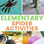 Elementary Spider Activities