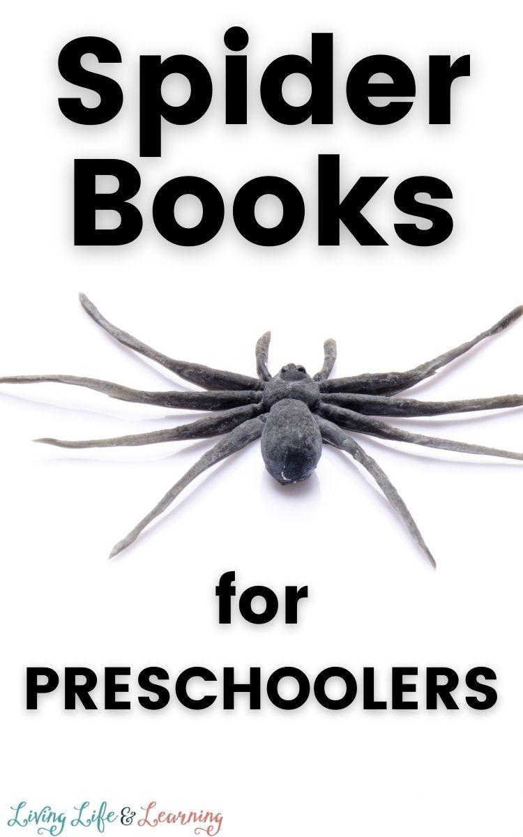 Best Spider Books for Preschoolers
