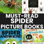 Must-Read Spider Picture Books